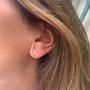 Puces d'oreilles LUZ